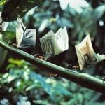Как зарабатывать в кризис или золотая жила риэлтора